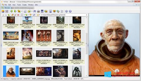 Screenshot XnView Windows 8.1