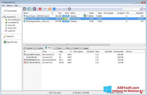 Screenshot BitTorrent Windows 8.1