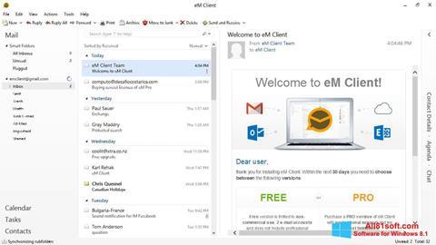 Screenshot eM Client Windows 8.1