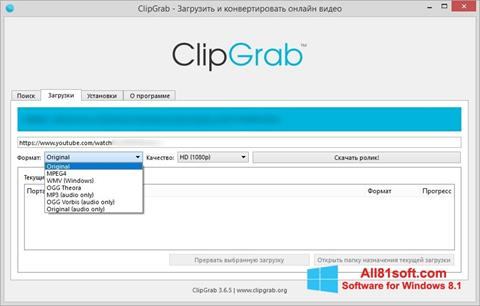 Screenshot ClipGrab Windows 8.1