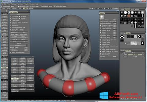 Screenshot 3D-Coat Windows 8.1