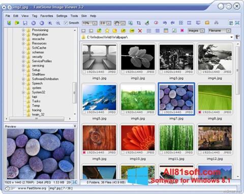 Screenshot FastStone Image Viewer Windows 8.1