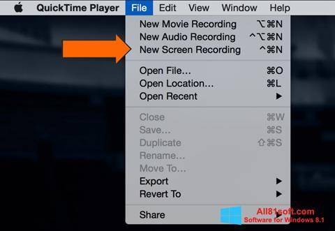 Screenshot QuickTime Windows 8.1