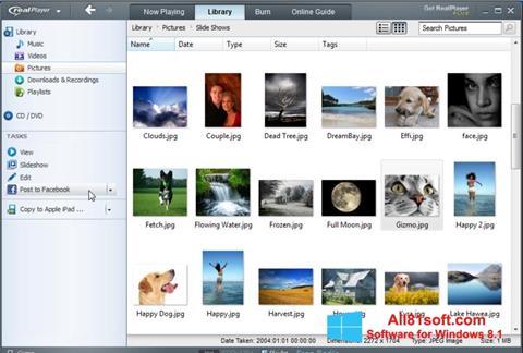 Screenshot RealPlayer Windows 8.1